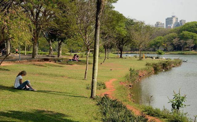 Pessoa sentada às margens do lago do Ibirapuera