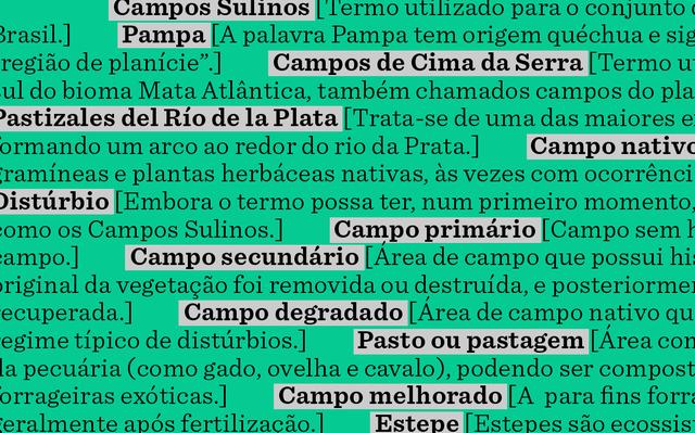 Sobre fundo verde escuro, termos e definições presentes no glossário. Os verbetes estão destacados em cinza e em negrito.