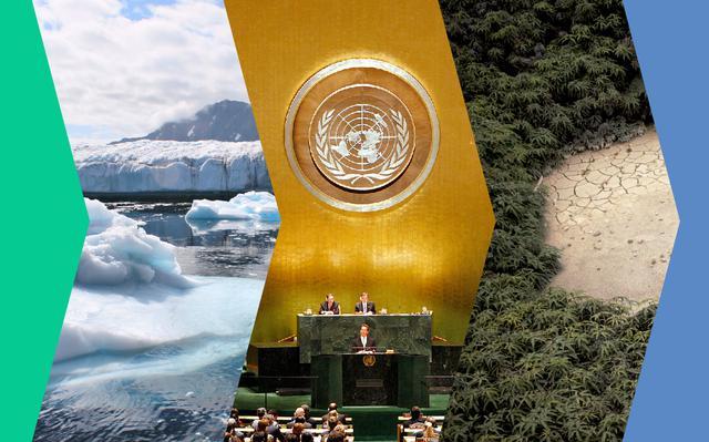 Montagem de imagens: pedaços de gelo flutuando, sala da assembleia geral da ONU, pedaço de solo compactado cercado com plantação