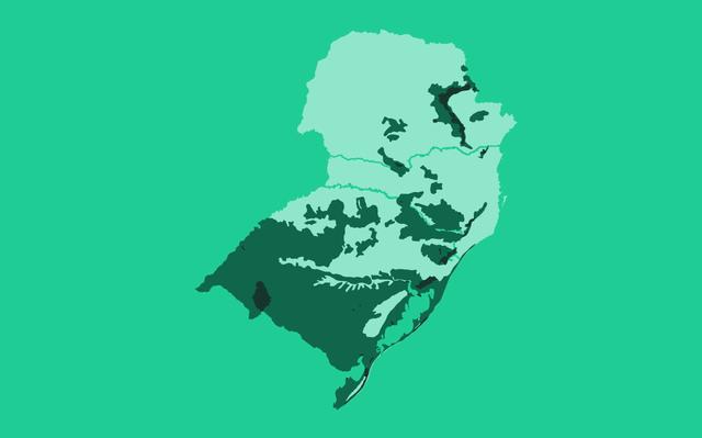 Mapa da região Sul destaca região da vegetação original