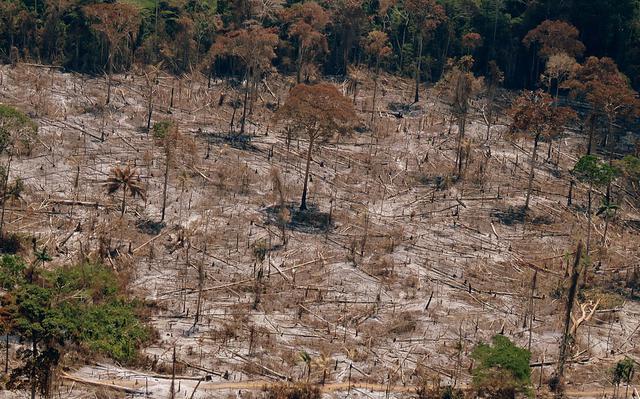 imagem aérea de área desmatada