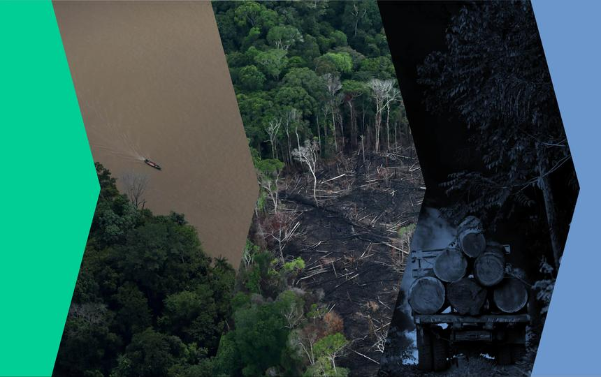 Montagem com três fotos: a primeira, de uma floresta em pé, a segunda, de um campo desmatado, e a terceira, de troncos empilhados. Sobre as imagens há filtros com diferentes cores, que vão do preto ao azul e o verde.