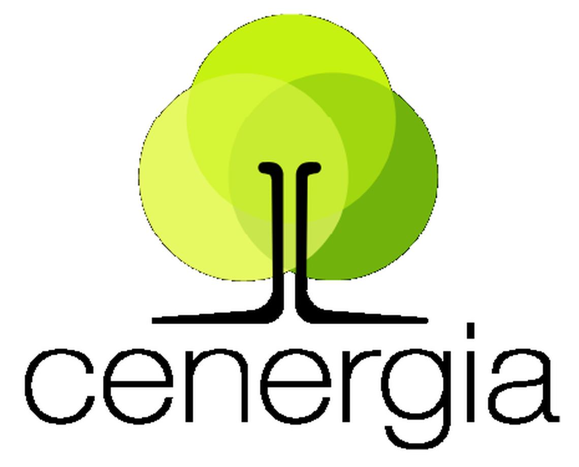 Centro de Economia Energética e Ambiental