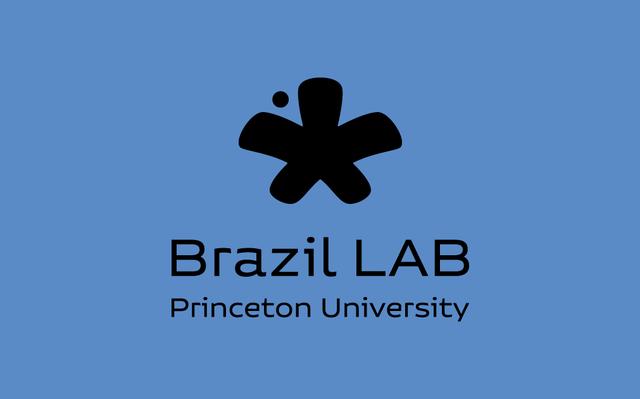 Brazil LAB - Princeton