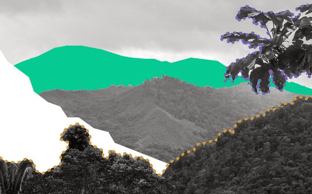 em preto e branco com detalhes coloridos ilustrados, paisagem de morros com vegetação densa