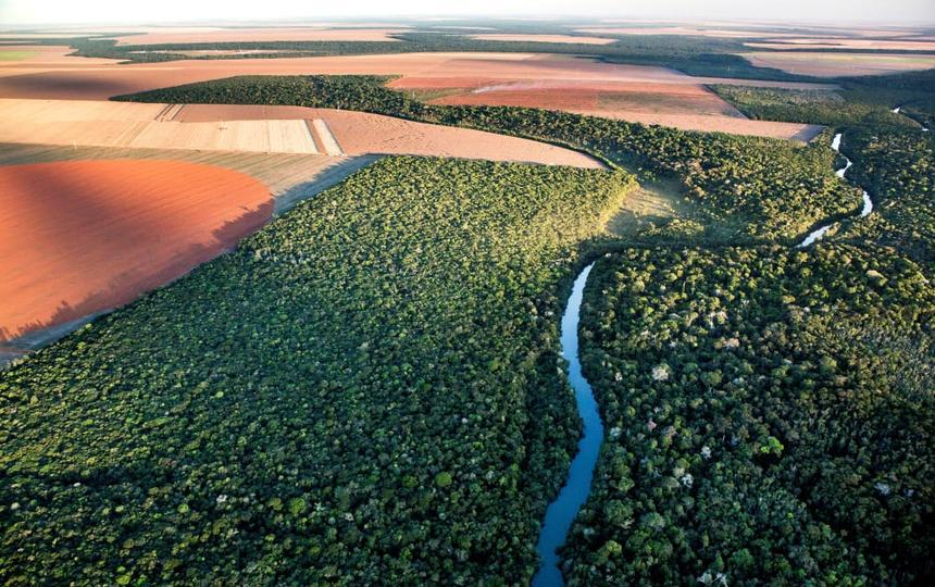 vista aérea de área de plantio ao lado de vegetação nativa cortada por rio